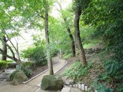播磨坂公園