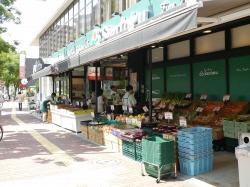 モデラートの近くにあるスーパー播磨坂三徳。青果や野菜が充実。