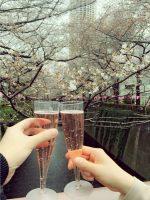 お花見シーズンには目黒川が花見スポットに変わります。出店もあるので気軽にお花見が楽しめます。