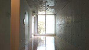 南向きの窓は部屋の奥まで照らします。