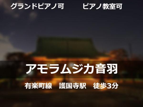 アモラムジカ音羽 護国寺 3分 グランドピアノ ピアノ教室 防音室