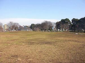 ひばりヶ丘戸建・公園