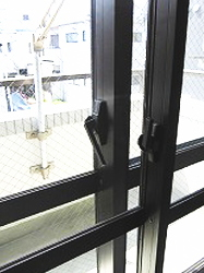 lotos-bouon-window2-187-250