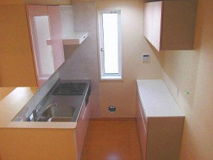 田端 メゾンオルテ 広々 システムキッチン と 食器棚