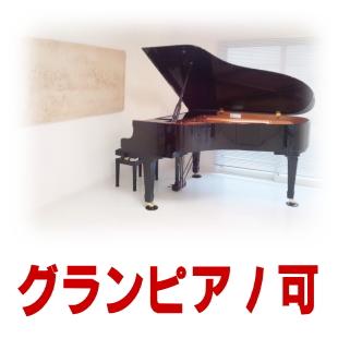 グランドピアノ可賃貸のイメージ