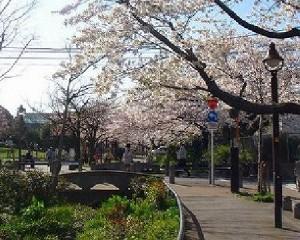 reliamode_gotokuji-kitazawaryokudou